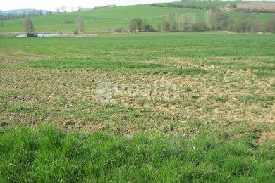 Lukrativní pozemek v obci Drachkov, okres Benešov, Ev.č.: 00979