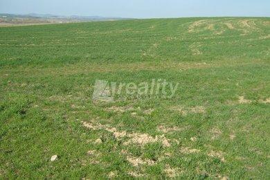 Pozemek u obce Drachkov, okres Benešov, Ev.č.: 00980
