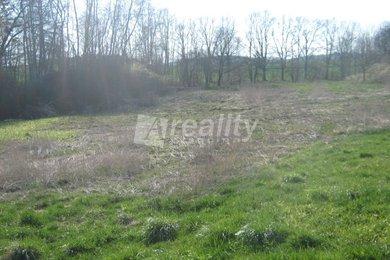 Prodej pozemku, KÚ obce Drachkov, okres Benešov, Ev.č.: 00982