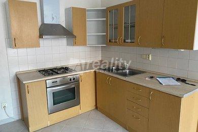 Prodej bytu 3+1 + nebytové prostory 50 m2, České Budějovice 6  - snížení ceny, Ev.č.: 01008