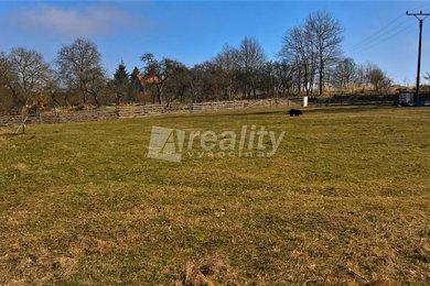 Prodej pozemku 3.462 m2, Blatná - Čekanice, Ev.č.: 01013