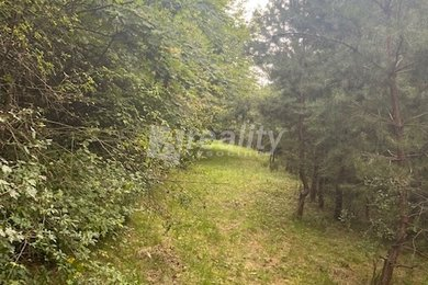 Prodej pozemku 3.595 m2, Brno-Kníničky snížení ceny, Ev.č.: 01028