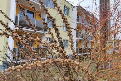Prodej bytu 3+1, Opatov, Ev.č.: 01061