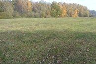 prodej-pozemky-trvaly-travni-porost-11001m2-rodvinov-dsc01370-76d177