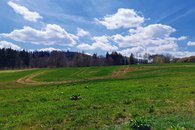 IMG_20210430_132214a