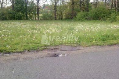Prodej pozemku pro zbudování zahrady 1272 m2, Nedabyle, Ev.č.: 01136