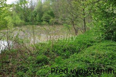 Prodej rybníka 4532m² s pozemkem 3804m² - Votice, Beztahov, Ev.č.: 01137