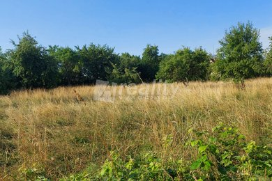 Prodej pozemků pro rodinnou rekreaci, 1594m² - Nová Včelnice, Ev.č.: 01141