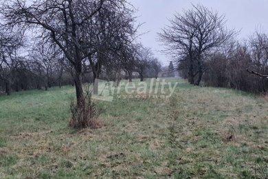 Prodej zahrady, 3.741 m2, Polní Voděrady u Kolína, Ev.č.: 01151