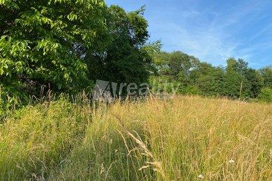 Prodej pozemku, 3.275 m², Vlastějovice u Kutné Hory, Ev.č.: 01193