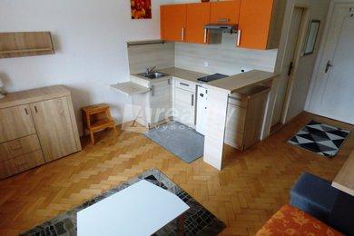 Pronájem pěkného bytu 1+kk s využití zahrady, Náměšť nad Oslavou, Ev.č.: 01232