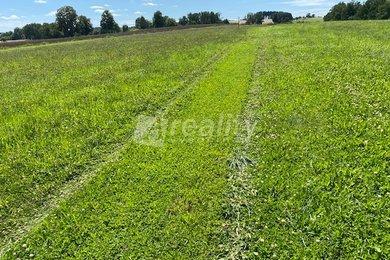 Prodej pozemku 1.000 m², Vlásenice u Pelhřimova, Ev.č.: 01233