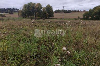 Prodej pozemků pro bydlení, 1953m² - Budišov, Ev.č.: 01296