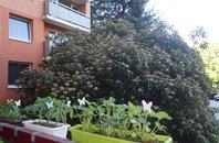 Prodej, Byty 3+1, 72 m² s lodžií, ul. Moldavská - Brno-Bohunice