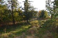 Prodej, Pozemky s výhledem na převedení pro stavební účely, 3275 m², Vratislavice