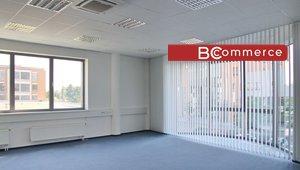 Pronájem moderních kanceláří Brno jih, 230 m²