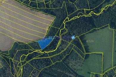 Prodej, Lesy, 2947m² - Nasavrky u Golčova Jeníkova, Ev.č.: 102-00182