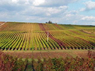 Nově nabývají platnost některá ustanovení v zákoně o DPH u pozemků