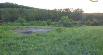 Prodej pozemku (2572m2), Roštín