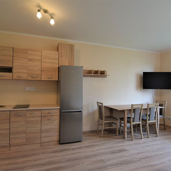 Pronájem bytu 1+kk 42 m²