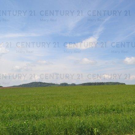 Prodej pozemku 17005 m2 pro budoucí výstavbu RD