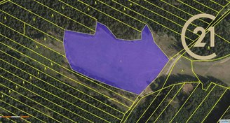 Prodej zem.pozemků v Opatově na Moravě, CP 19358 m2
