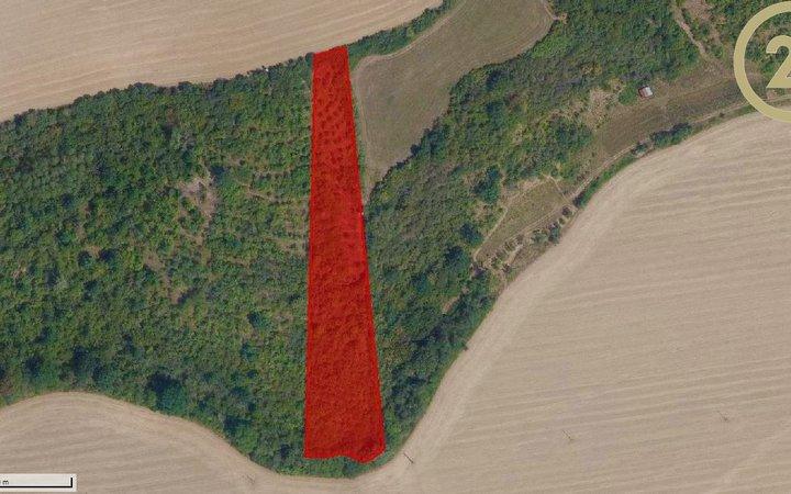 Pozemky k prodeji v Nedachlebicích - vhodné k investici