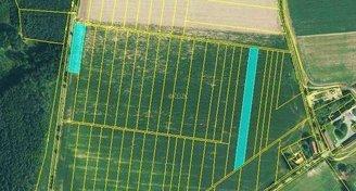 Zemědělská půda v katastru Kostelec nad Černými lesy