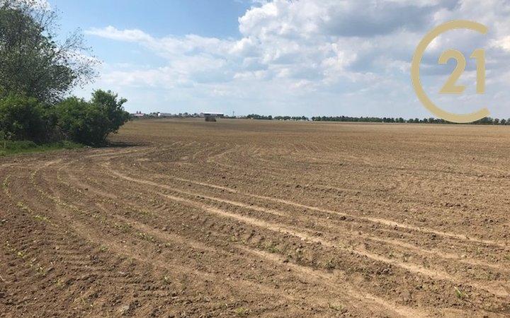 Zemědělská půda 20 762m2 vhodná pro využití jako pastviny pro koně, v obci  Herink, Praha-východ