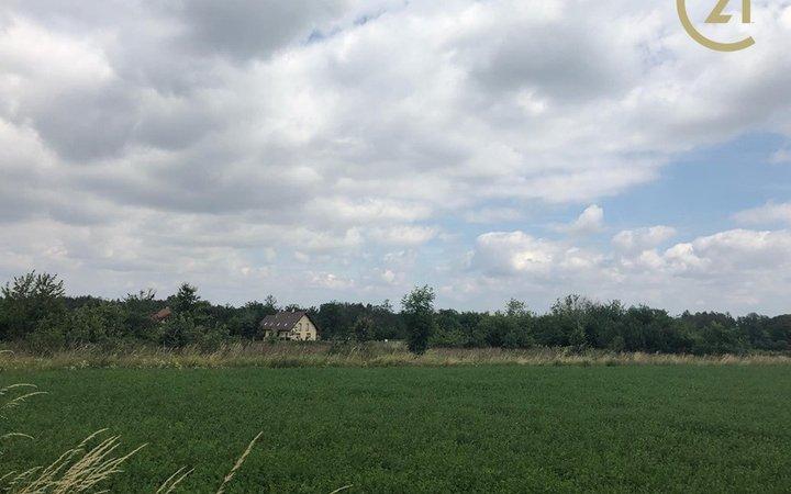 Prodej pozemku 2815 m2 v obci Rabštejnská Lhota