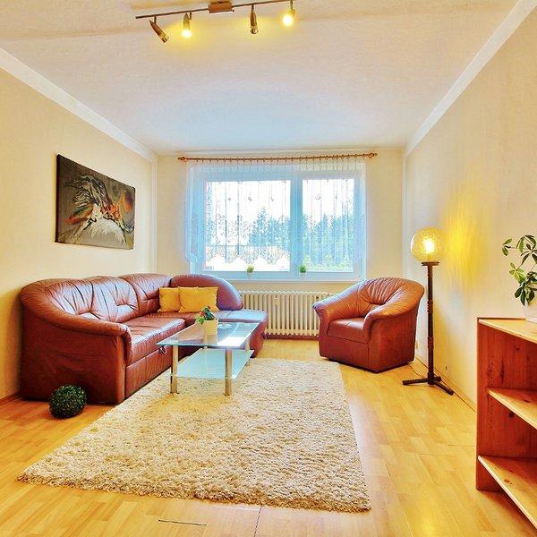 Pronajmu krásný byt 3+1 s lodžií