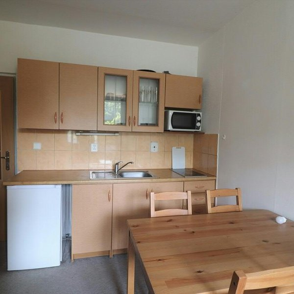 Pronájem, byt 1+kk, 26m² - Liberec XIV-Ruprechtice