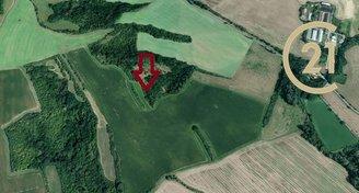 Prodej zemědělských pozemků 14 016 m², k.ú. Babice, okres Uherské Hradiště