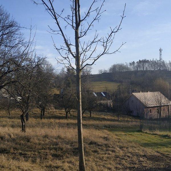Pozemek, o celkové výměře 2 607m2, v obci Turkovice, na Praze Východ.