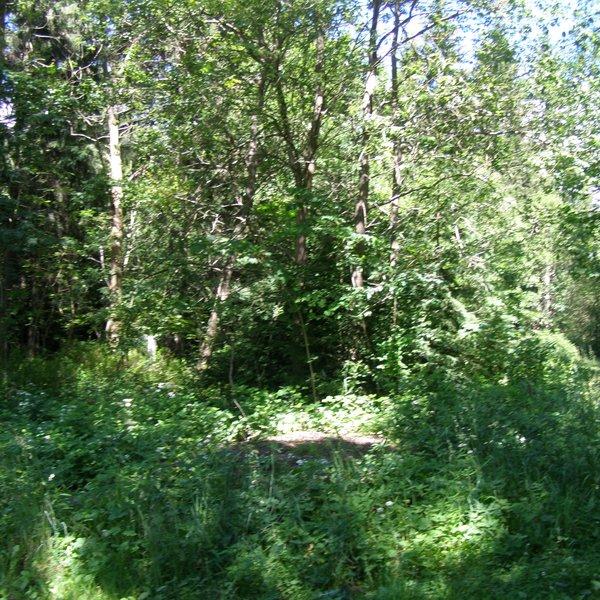 Prodej pozemku 2845m² - Harrachov