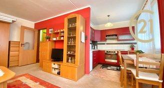 Krásný a vybavený Jižně orientovaný byt 1+1 36m2 s lodžií ve Slaném