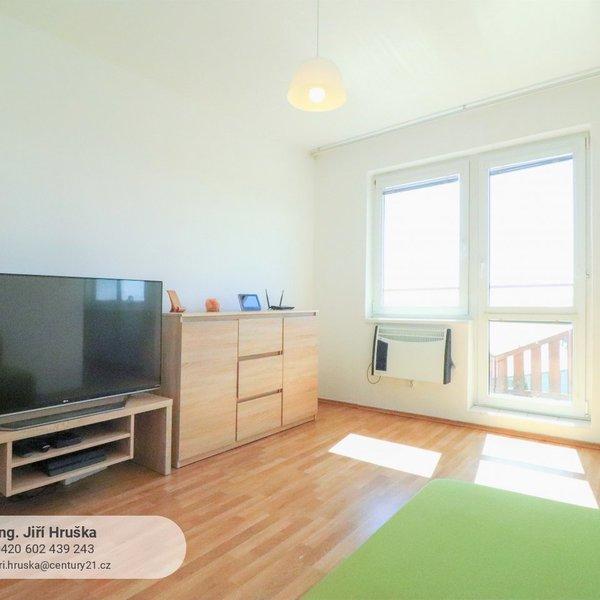 Slunný 1+1 35 m2 s balkonem, Milovice