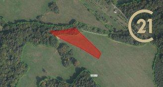 Prodej zemědělských pozemků 6 646 m², k.ú. Horní Lideč, okres Vsetín