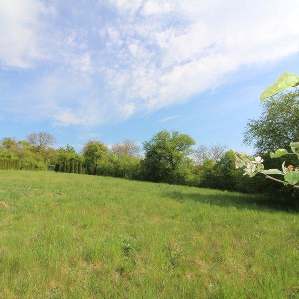 Zahrada s krásným výhledem, 1441 m²