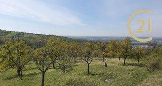 Ovocný sad, zahrada s chatkou, Pozemek 5907m² - Židlochovice