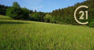Prodej pozemků - trvalý travní porost, lesní pozemek, 8071m² - k.ú.Šťudlov