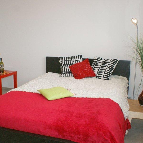 Pronájem krásného zařízeného bytu 2+kk / 40,6 m2 po rekonstrukci