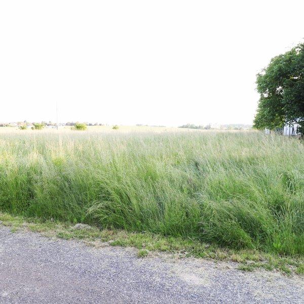 Prodej pozemek k bydlení, Skotnice
