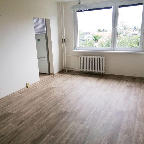 Slunný klidný byt 1+kk po rekonstrukci u metra Opatov