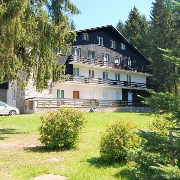 Prodej bytu 5+1, 95 m², OV,  Harrachov