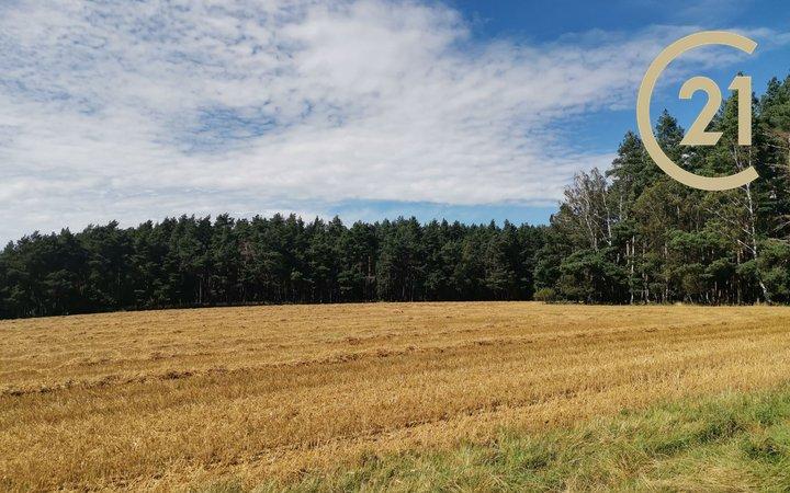 Prodej lesa, 37 200m² - Horní Poříčí