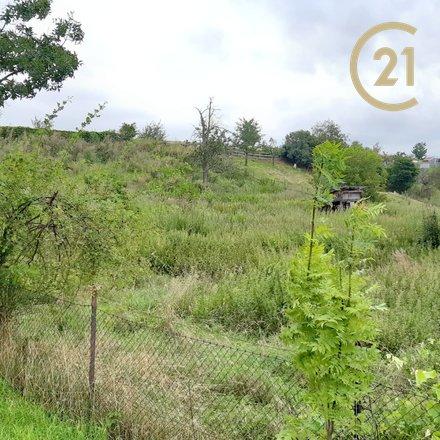 Prodej pozemku 3122 m2, Bělov