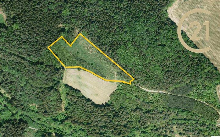 Prodej, Lesy, 17290m² - Křetín
