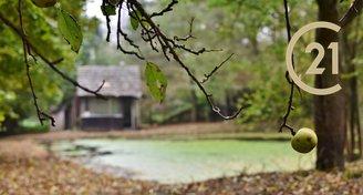 Prodej zahrady s chatami a rybníkem 3 833 m² - Střítež u Třebíče