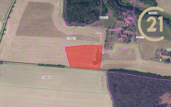 Prodej zemědělských pozemků 5 485 m², k.ú. Brocná, okres Rychnov nad Kněžnou
